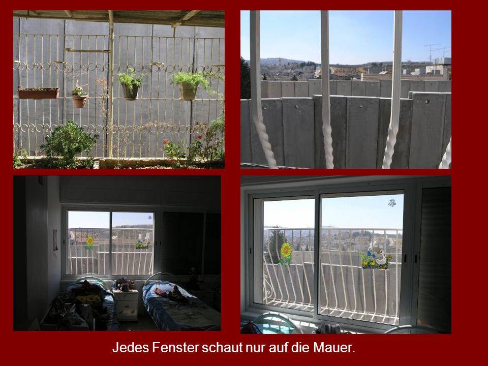Jedes Fenster schaut nur auf die Mauer.