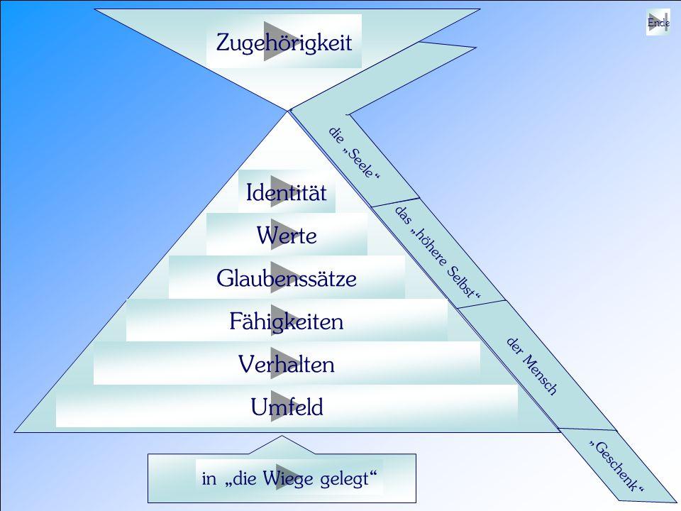 Umfeld Verhalten Fähigkeiten Glaubenssätze Werte Identität Zugehörigkeit in die Wiege gelegt der Mensch das höhere Selbst Geschenk die Seele Ende