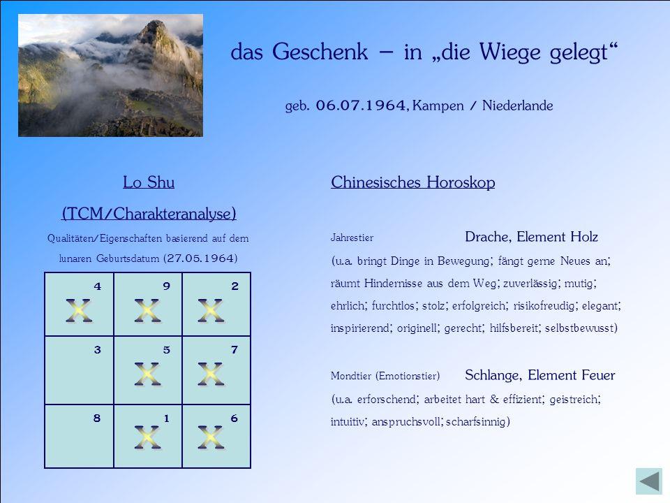 geb. 06.07.1964, Kampen / Niederlande das Geschenk – in die Wiege gelegt Lo Shu (TCM/Charakteranalyse) Qualitäten/Eigenschaften basierend auf dem luna