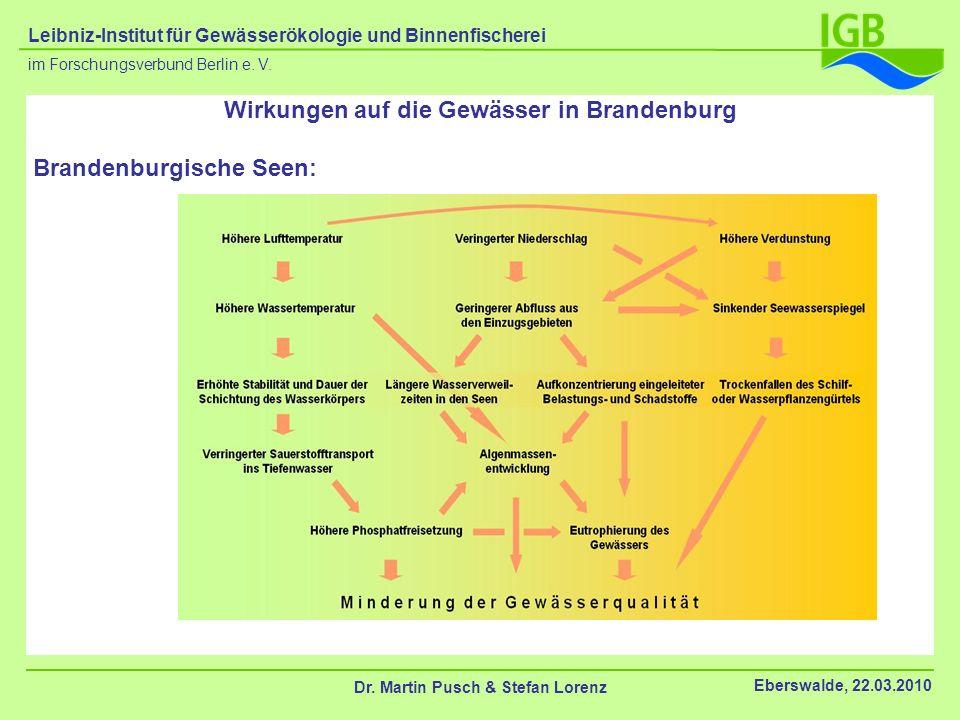 Wirkungen auf die Gewässer in Brandenburg Brandenburgische Seen: Dr. Martin Pusch & Stefan Lorenz Eberswalde, 22.03.2010 im Forschungsverbund Berlin e