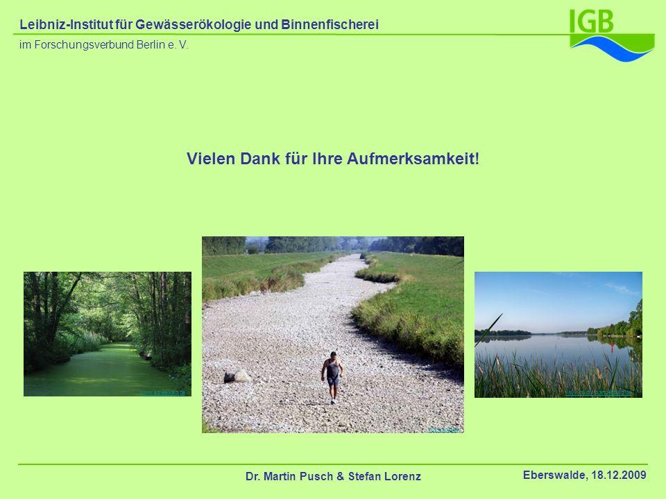 Vielen Dank für Ihre Aufmerksamkeit! Dr. Martin Pusch & Stefan Lorenz Eberswalde, 18.12.2009 im Forschungsverbund Berlin e. V. Leibniz-Institut für Ge