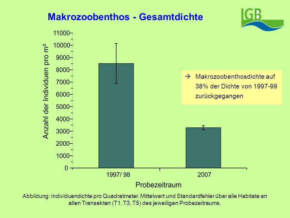 Makrozoobenthos - Gesamtdichte Abbildung: Individuendichte pro Quadratmeter. Mittelwert und Standardfehler über alle Habitate an allen Transekten (T1,