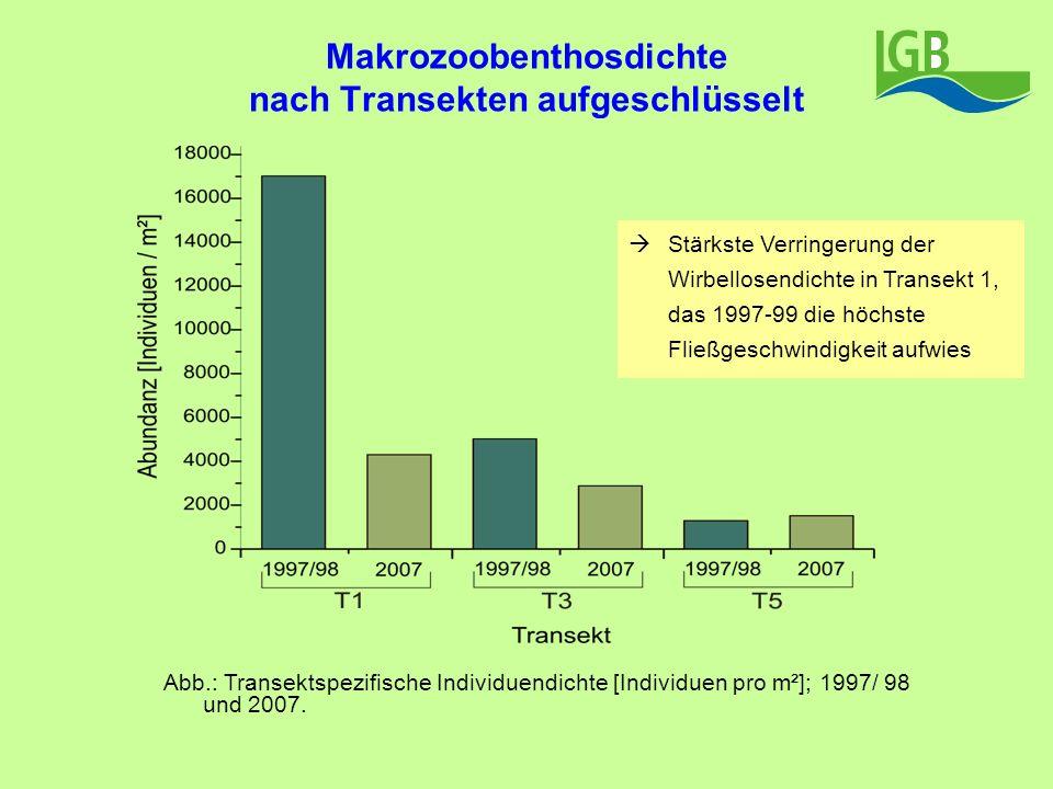 Makrozoobenthosdichte nach Transekten aufgeschlüsselt Abb.: Transektspezifische Individuendichte [Individuen pro m²]; 1997/ 98 und 2007. Stärkste Verr