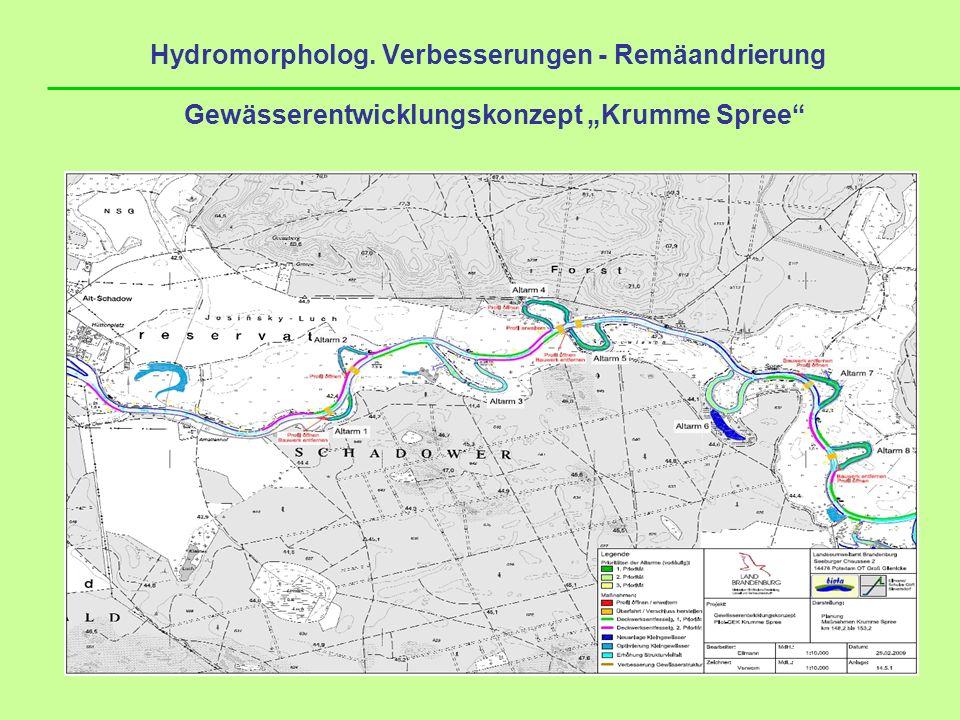 Hydromorpholog. Verbesserungen - Remäandrierung Gewässerentwicklungskonzept Krumme Spree