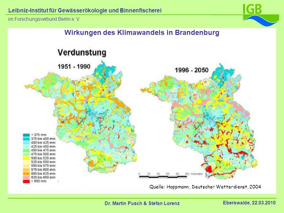 Quelle: Hoppmann, Deutscher Wetterdienst, 2004 Wirkungen des Klimawandels in Brandenburg Dr. Martin Pusch & Stefan Lorenz Eberswalde, 22.03.2010 im Fo