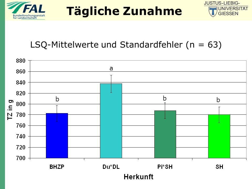 Täglicher Muskelansatz LSQ-Mittelwerte und Standardfehler (n = 63) ab b a b Herkunft