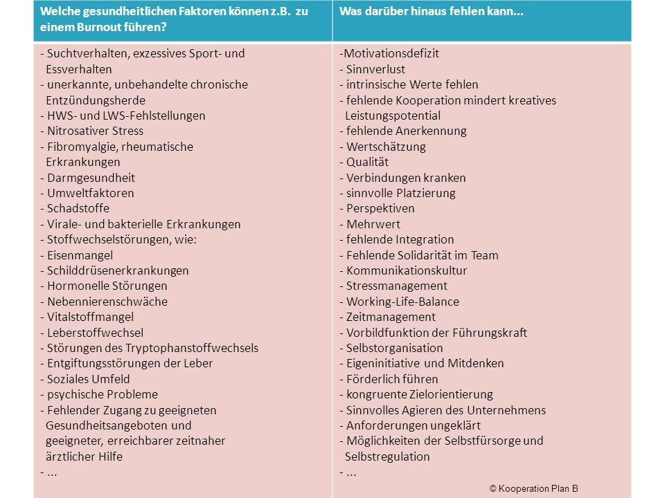 Plan B - Seminargruppe an 8 Abenden von 18.00 – 20.00, Beginn 08-13, mit 8 TeilnehmerInnen, Veranstaltungsort: Hamburg Resilienz-, Regulations-, und salutogenetische Faktoren kennen und aufbauen Visionen – Ziele – Motivation entwickeln Den inneren Kompass aktivieren Steuerung und Ressourcen gewinnen Kommunikation, Kooperation, Netzwerke - Verbindung als Powerfaktoren nutzen © Kooperation Plan B