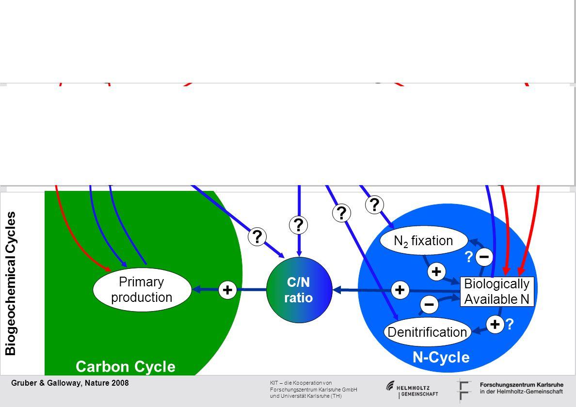 KIT – die Kooperation von Forschungszentrum Karlsruhe GmbH und Universität Karlsruhe (TH) N 2 fixation Denitrification Biologically Available N N-Cycl