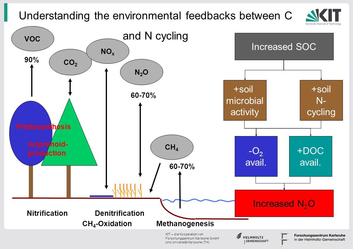 24 | Klaus Butterbach-Bahl IMK-IFU | 13.05.2009 Ris Ø DTU KIT – die Kooperation von Forschungszentrum Karlsruhe GmbH und Universität Karlsruhe (TH) Climate feedbacks on forest soil N 2 O/NO emissions Temp.