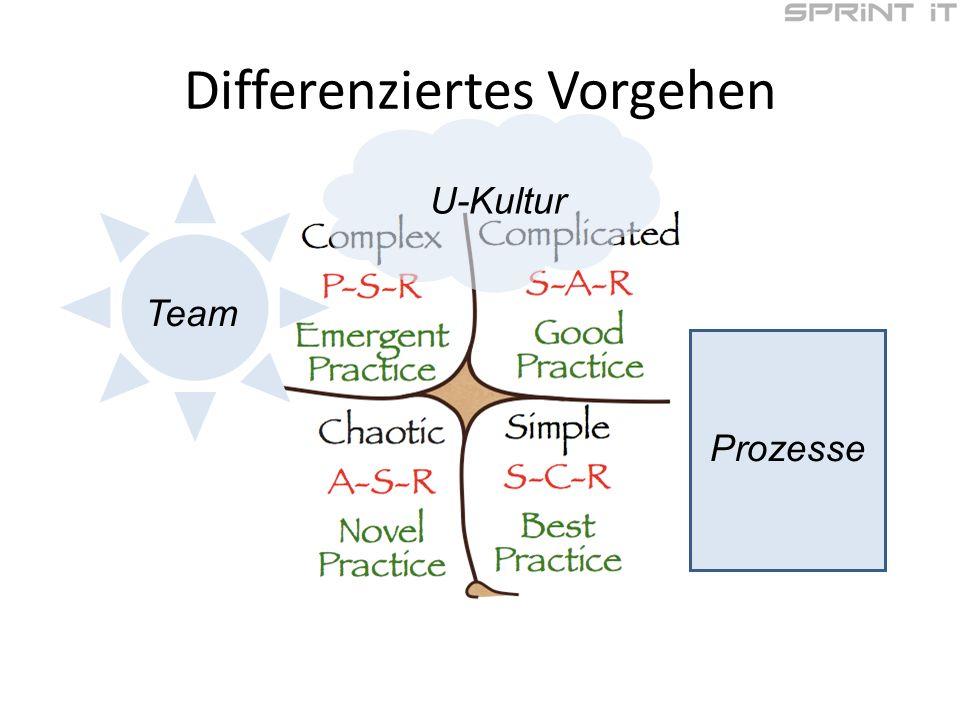 Differenziertes Vorgehen Prozesse U-Kultur Team