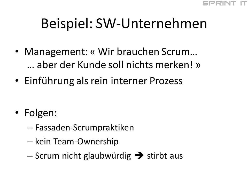 Beispiel: SW-Unternehmen Management: « Wir brauchen Scrum… … aber der Kunde soll nichts merken.