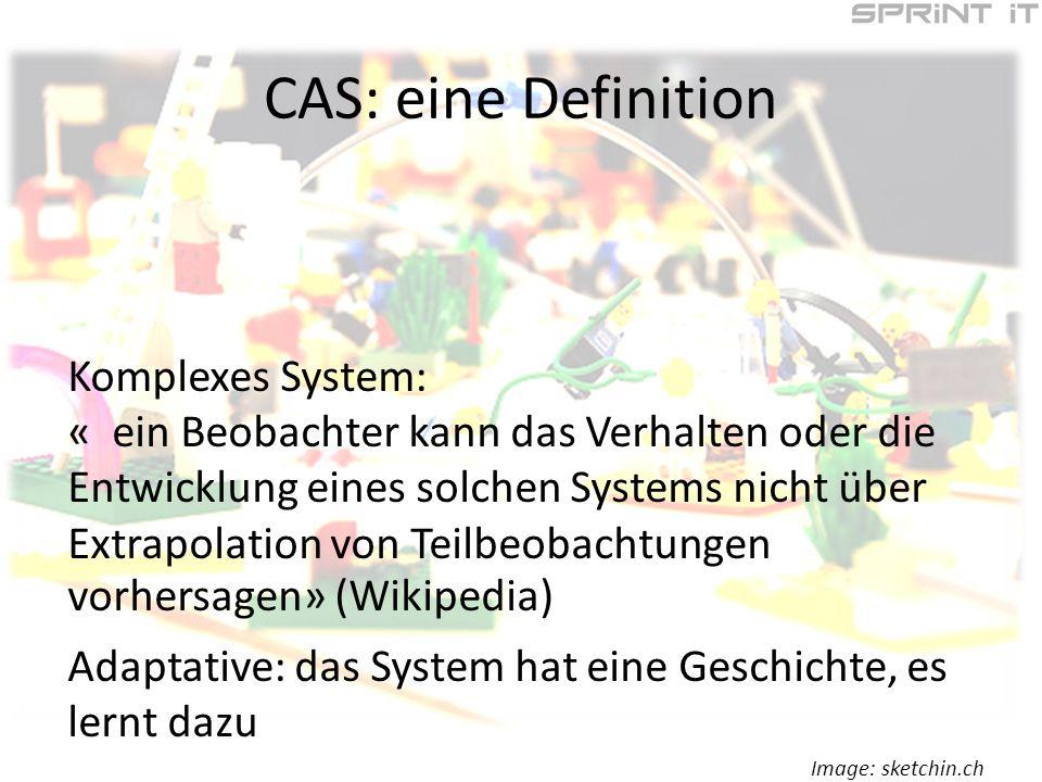 CAS: eine Definition Komplexes System: « ein Beobachter kann das Verhalten oder die Entwicklung eines solchen Systems nicht über Extrapolation von Teilbeobachtungen vorhersagen» (Wikipedia) Adaptative: das System hat eine Geschichte, es lernt dazu Image: sketchin.ch