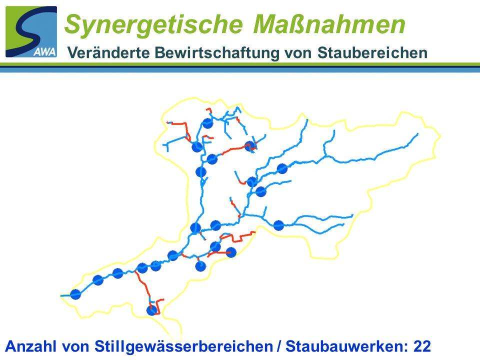 Anzahl von Stillgewässerbereichen / Staubauwerken: 22 Synergetische Maßnahmen Veränderte Bewirtschaftung von Staubereichen