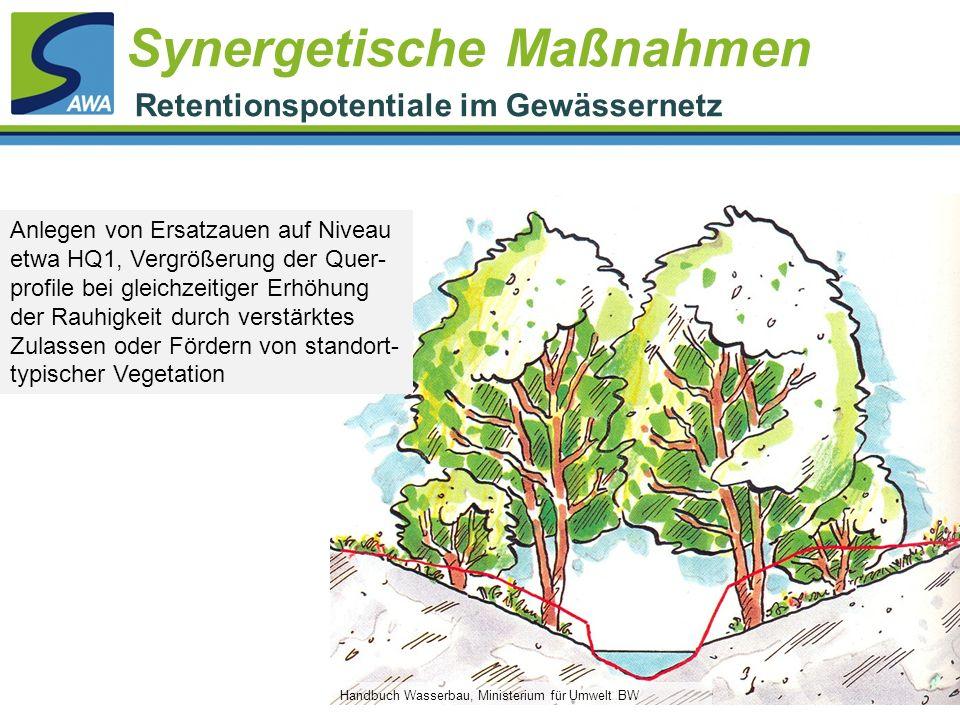 Handbuch Wasserbau, Ministerium für Umwelt BW Anlegen von Ersatzauen auf Niveau etwa HQ1, Vergrößerung der Quer- profile bei gleichzeitiger Erhöhung d