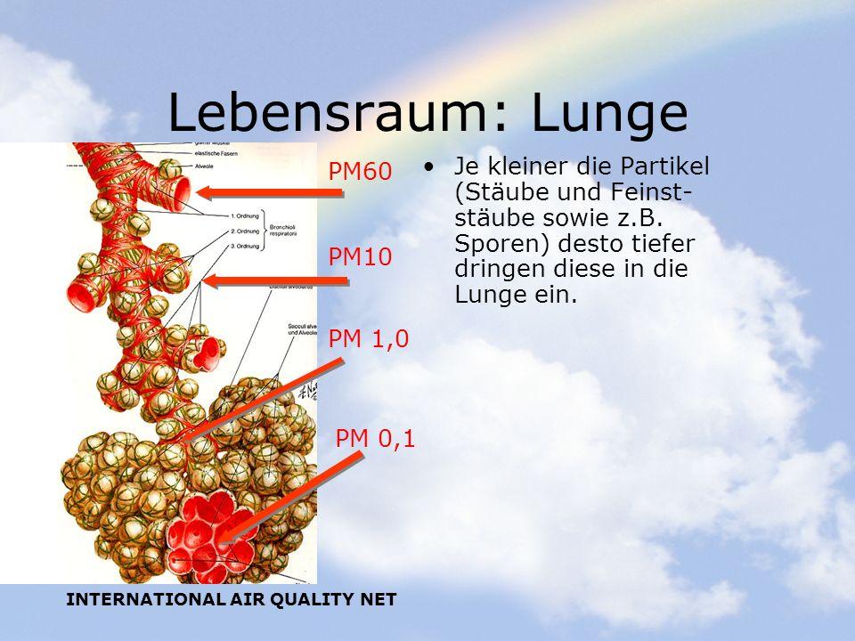 INTERNATIONAL AIR QUALITY NET Lebensraum: Lunge Je kleiner die Partikel (Stäube und Feinst- stäube sowie z.B. Sporen) desto tiefer dringen diese in di