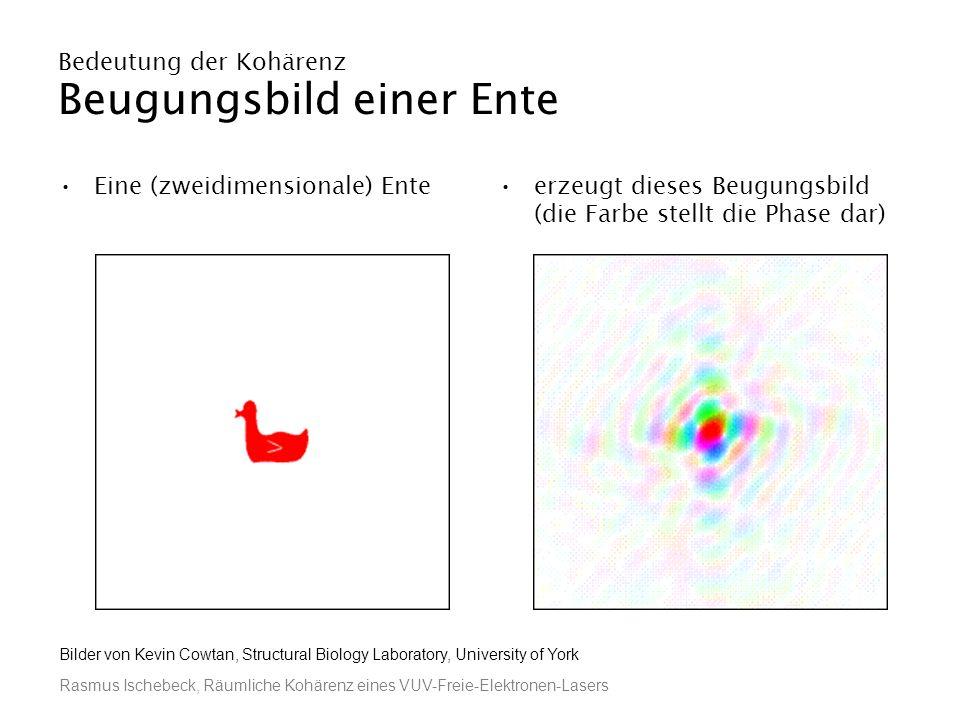 Rasmus Ischebeck, Räumliche Kohärenz eines VUV-Freie-Elektronen-Lasers Bedeutung der Kohärenz Beugungsbild einer Ente Eine (zweidimensionale) Enteerze