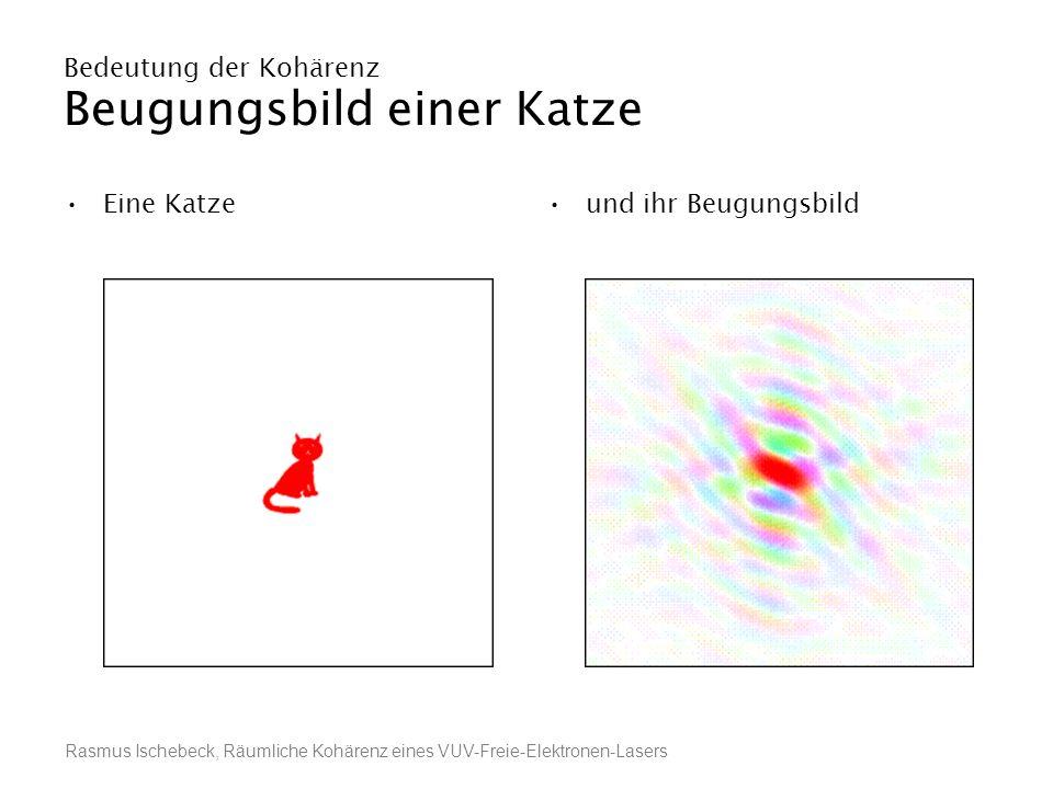 Rasmus Ischebeck, Räumliche Kohärenz eines VUV-Freie-Elektronen-Lasers Bedeutung der Kohärenz Beugungsbild einer Katze Eine Katzeund ihr Beugungsbild