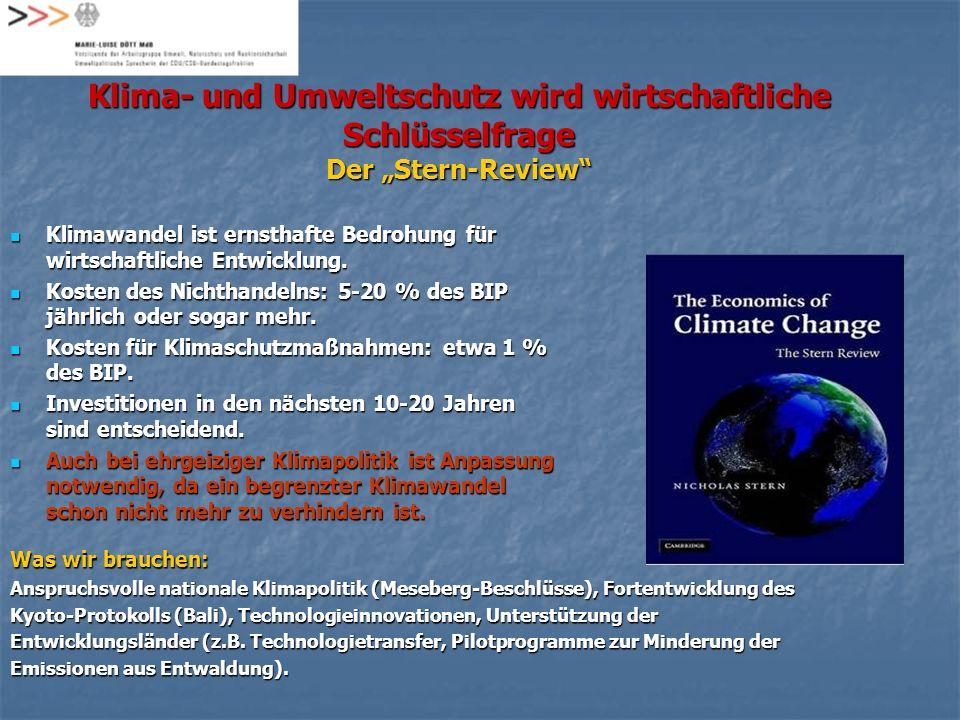 Klima- und Umweltschutz wird wirtschaftliche Schlüsselfrage Der Stern-Review Was wir brauchen: Anspruchsvolle nationale Klimapolitik (Meseberg-Beschlü