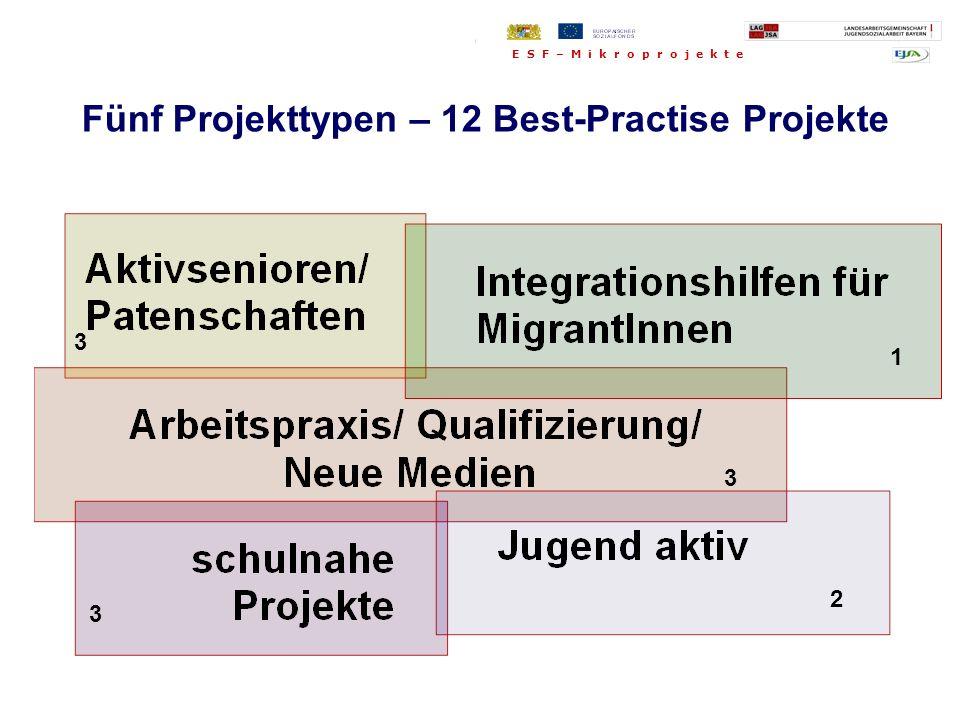 Fünf Projekttypen: Fünf Projekttypen – 12 Best-Practise Projekte 3 1 3 2 3 E S F – M i k r o p r o j e k t e