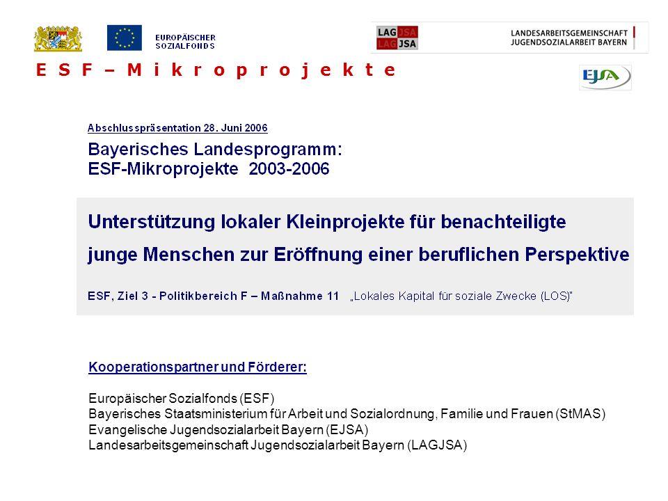 Kooperationspartner und Förderer: Europäischer Sozialfonds (ESF) Bayerisches Staatsministerium für Arbeit und Sozialordnung, Familie und Frauen (StMAS