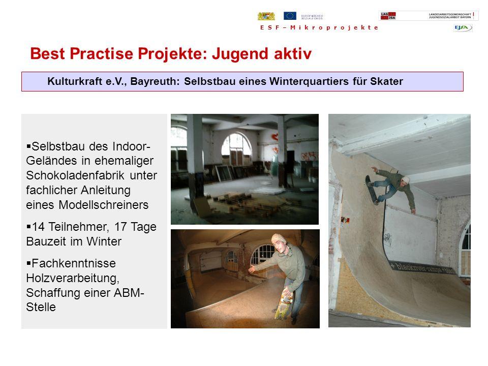 Kulturkraft e.V., Bayreuth: Selbstbau eines Winterquartiers für Skater Selbstbau des Indoor- Geländes in ehemaliger Schokoladenfabrik unter fachlicher