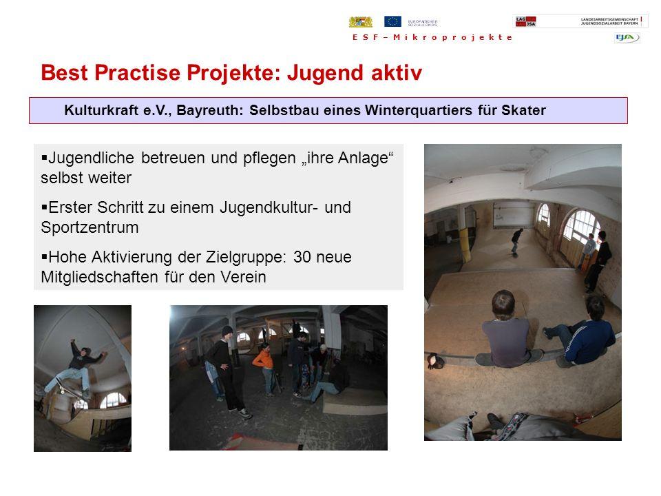 Kulturkraft e.V., Bayreuth: Selbstbau eines Winterquartiers für Skater Jugendliche betreuen und pflegen ihre Anlage selbst weiter Erster Schritt zu ei
