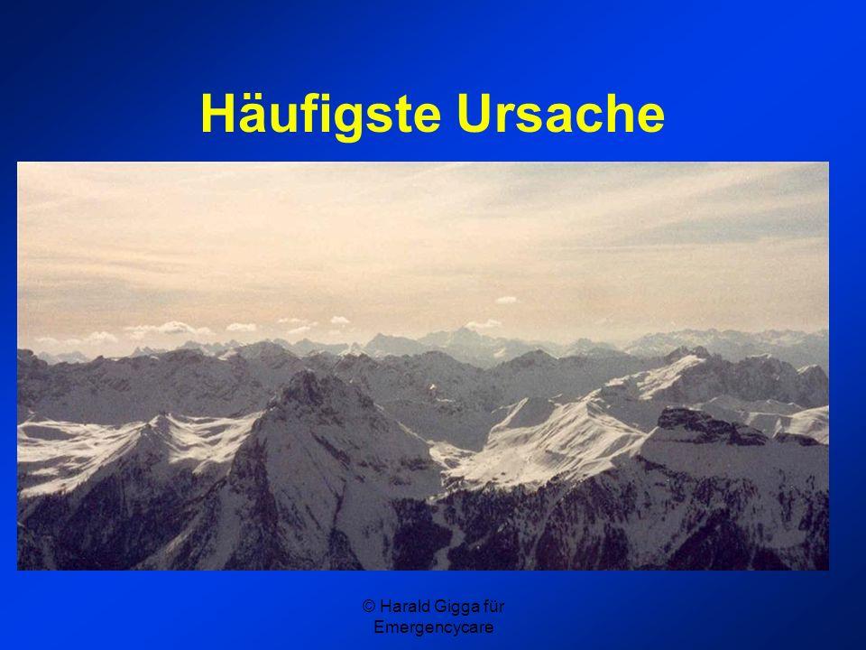 © Harald Gigga für Emergencycare Häufigste Ursache