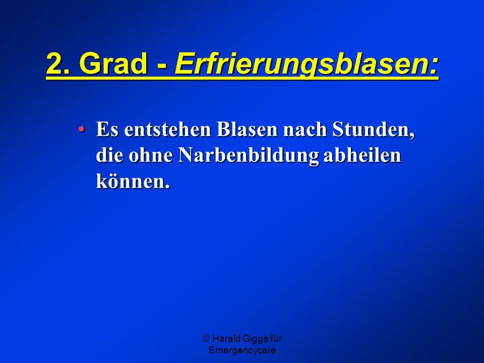 © Harald Gigga für Emergencycare 2. Grad - Erfrierungsblasen: Es entstehen Blasen nach Stunden, die ohne Narbenbildung abheilen können.Es entstehen Bl