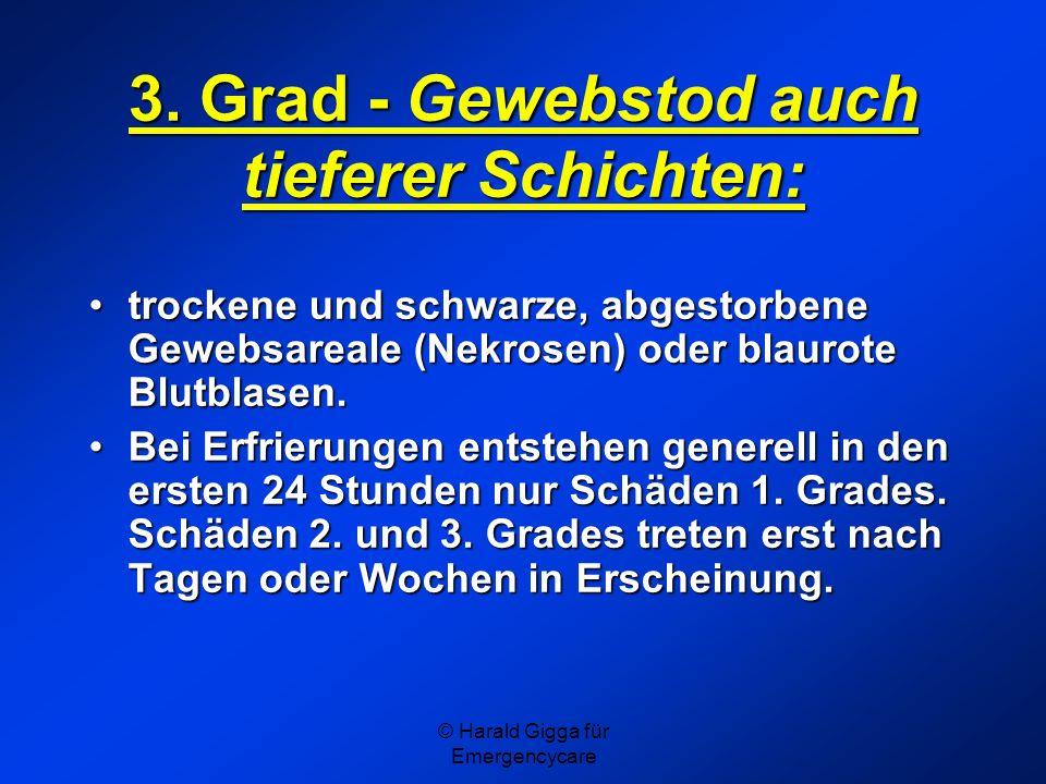 © Harald Gigga für Emergencycare 3. Grad - Gewebstod auch tieferer Schichten: trockene und schwarze, abgestorbene Gewebsareale (Nekrosen) oder blaurot