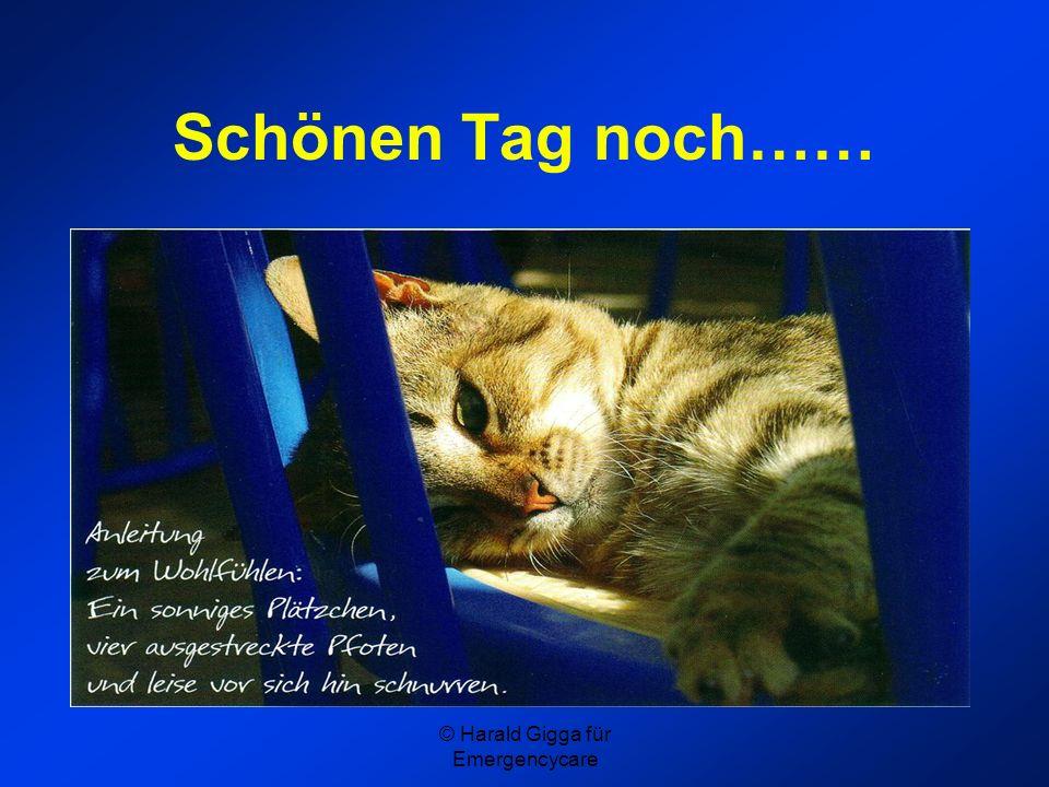 © Harald Gigga für Emergencycare Schönen Tag noch……