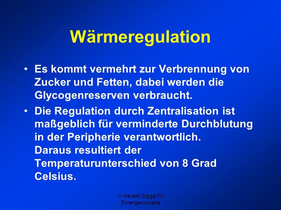 © Harald Gigga für Emergencycare Wärmeregulation Es kommt vermehrt zur Verbrennung von Zucker und Fetten, dabei werden die Glycogenreserven verbraucht