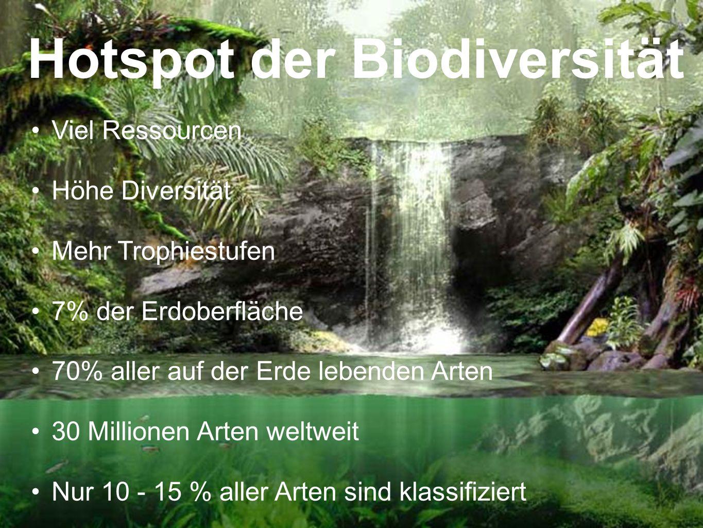 Hotspot der Biodiversität Viel Ressourcen Höhe Diversität Mehr Trophiestufen 7% der Erdoberfläche 70% aller auf der Erde lebenden Arten 30 Millionen A