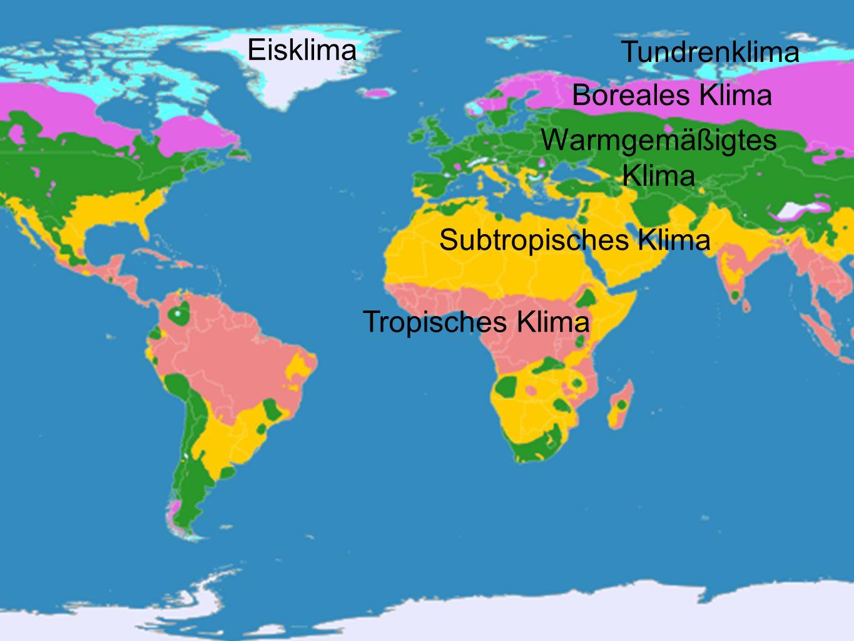 Eisklima Tundrenklima Boreales Klima Warmgemäßigtes Klima Subtropisches Klima Tropisches Klima