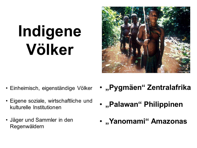 Indigene Völker Pygmäen Zentralafrika Palawan Philippinen Yanomami Amazonas Einheimisch, eigenständige Völker Eigene soziale, wirtschaftliche und kult