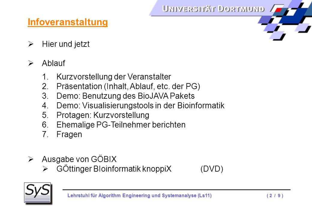 Lehrstuhl für Algorithm Engineering und Systemanalyse (Ls11) ( 2 / 9 ) Infoveranstaltung Hier und jetzt Ablauf 1.Kurzvorstellung der Veranstalter 2.Pr