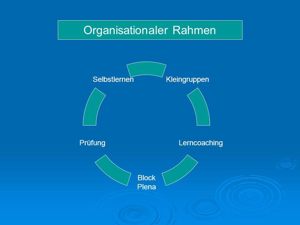 Kleingruppen Lerncoaching Block Plena Prüfung Selbstlernen Organisationaler Rahmen