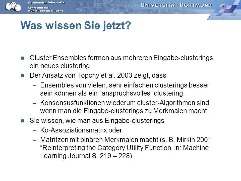 Was wissen Sie jetzt? Cluster Ensembles formen aus mehreren Eingabe-clusterings ein neues clustering. Der Ansatz von Topchy et al. 2003 zeigt, dass –E