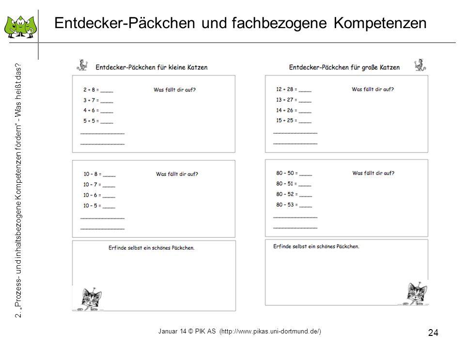 24 Entdecker-Päckchen und fachbezogene Kompetenzen 2. Prozess- und inhaltsbezogene Kompetenzen fördern - Was heißt das? Januar 14 © PIK AS (http://www
