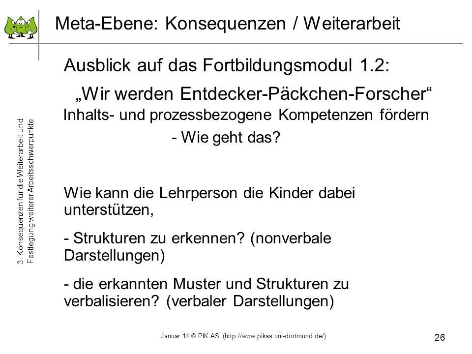 26 Meta-Ebene: Konsequenzen / Weiterarbeit 3. Konsequenzen für die Weiterarbeit und Festlegung weiterer Arbeitsschwerpunkte Ausblick auf das Fortbildu
