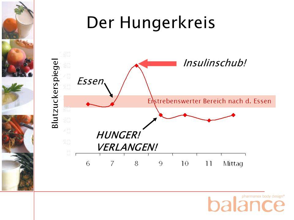 HUNGER! VERLANGEN! Essen Insulinschub! Der Hungerkreis Blutzuckerspiegel Erstrebenswerter Bereich nach d. Essen