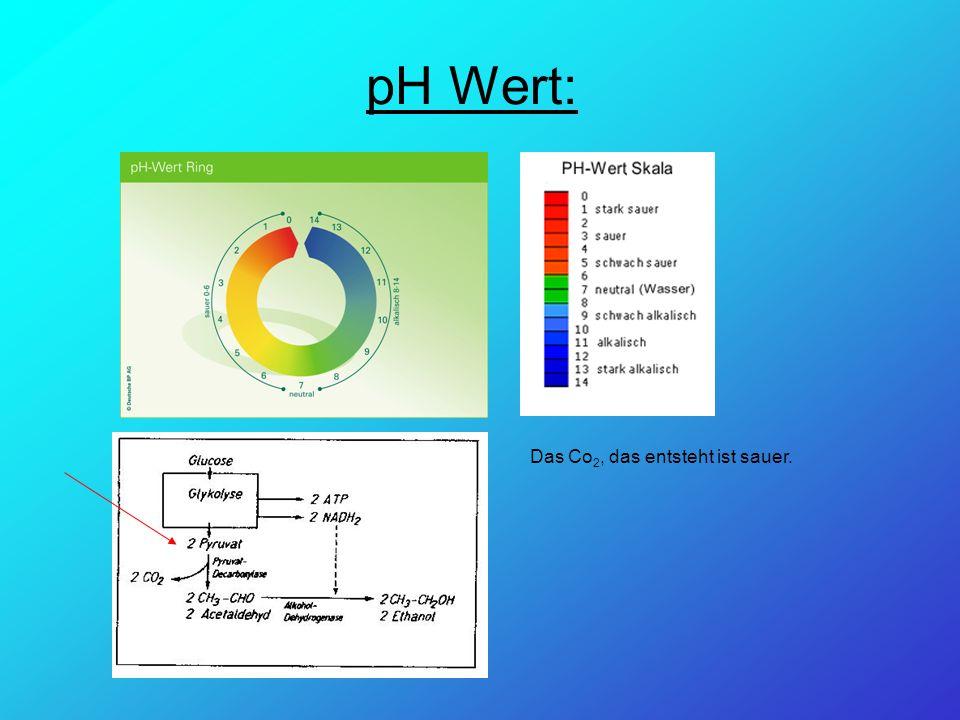 pH Wert: Das Co 2, das entsteht ist sauer.