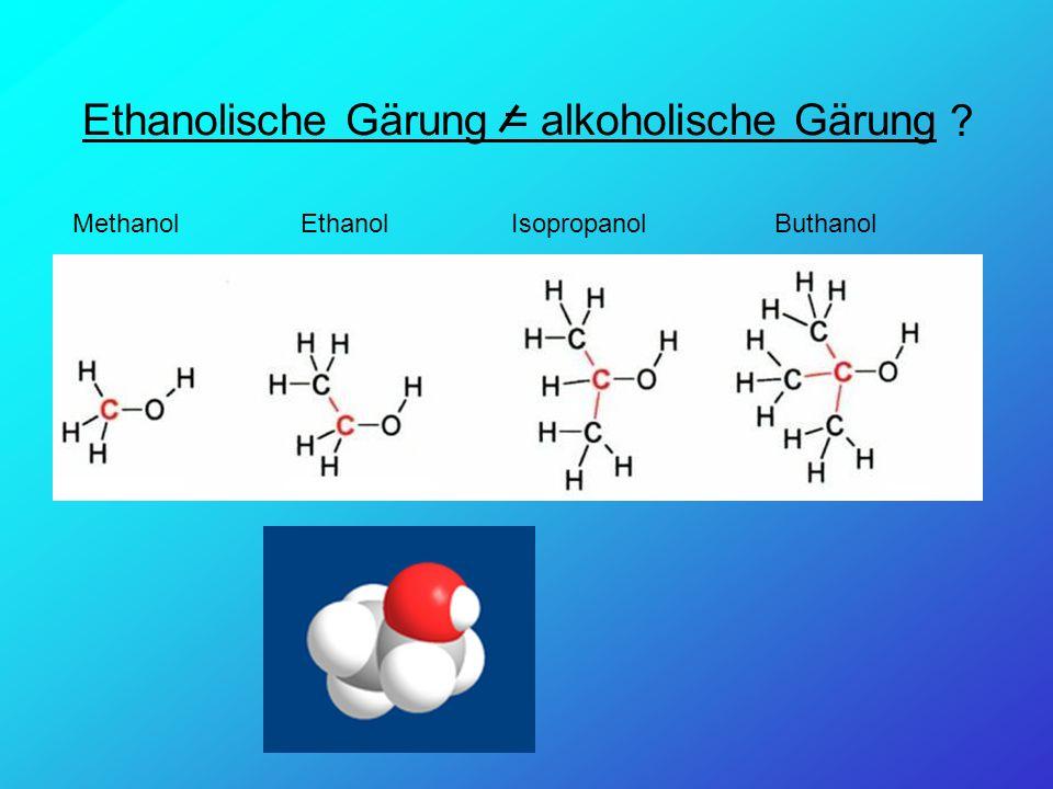 Ethanolische Gärung = alkoholische Gärung MethanolEthanolIsopropanolButhanol