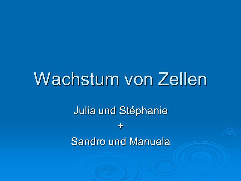 Wachstum von Zellen Julia und Stéphanie + Sandro und Manuela