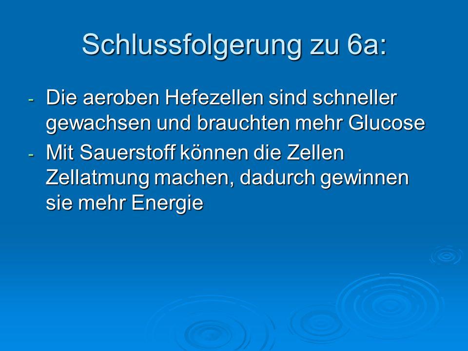 Schlussfolgerung zu 6a: - Die aeroben Hefezellen sind schneller gewachsen und brauchten mehr Glucose - Mit Sauerstoff können die Zellen Zellatmung mac