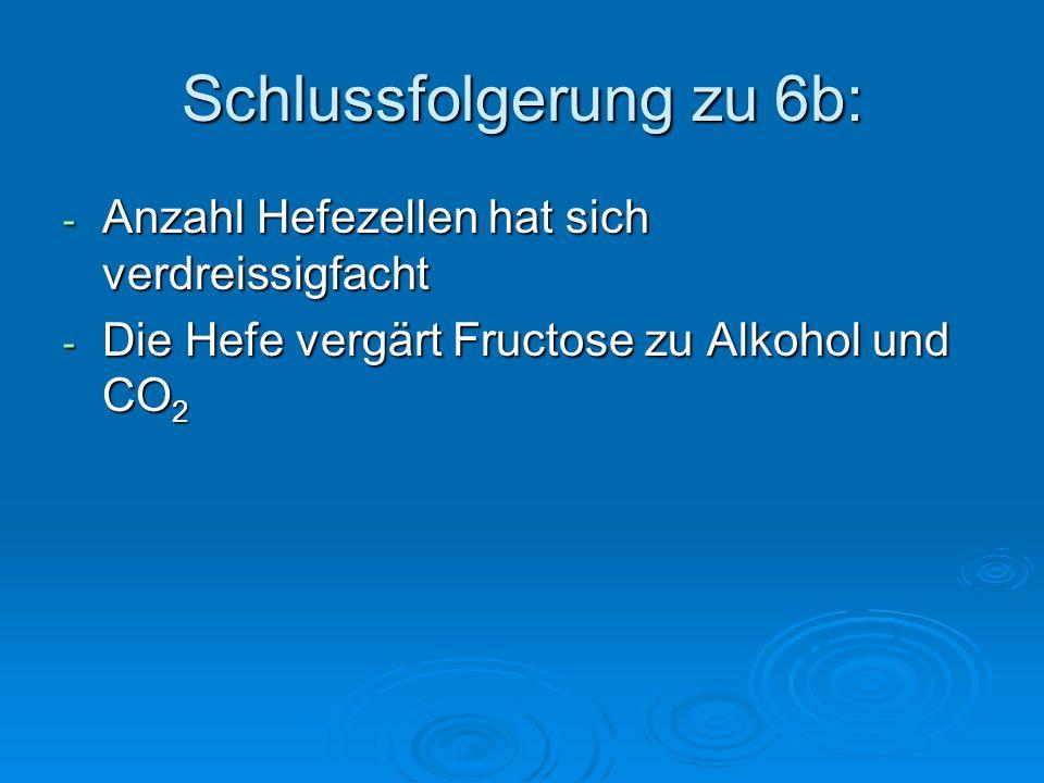 Schlussfolgerung zu 6b: - Anzahl Hefezellen hat sich verdreissigfacht - Die Hefe vergärt Fructose zu Alkohol und CO 2