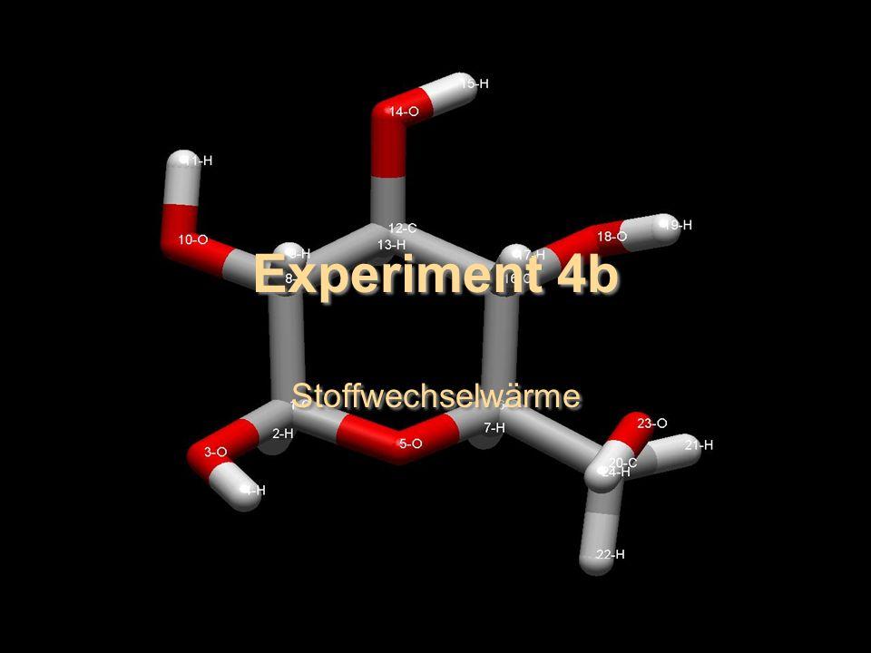 Experiment 4b Stoffwechselwärme