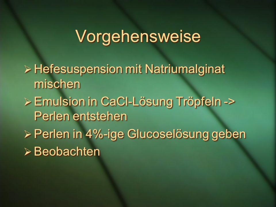 Vorgehensweise Hefesuspension mit Natriumalginat mischen Emulsion in CaCl-Lösung Tröpfeln -> Perlen entstehen Perlen in 4%-ige Glucoselösung geben Beo