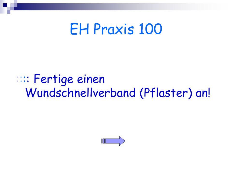 EH Praxis 100 :::: Fertige einen Wundschnellverband (Pflaster) an!