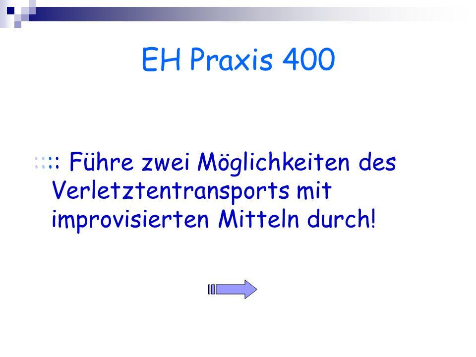 EH Praxis 400 :::: Führe zwei Möglichkeiten des Verletztentransports mit improvisierten Mitteln durch!