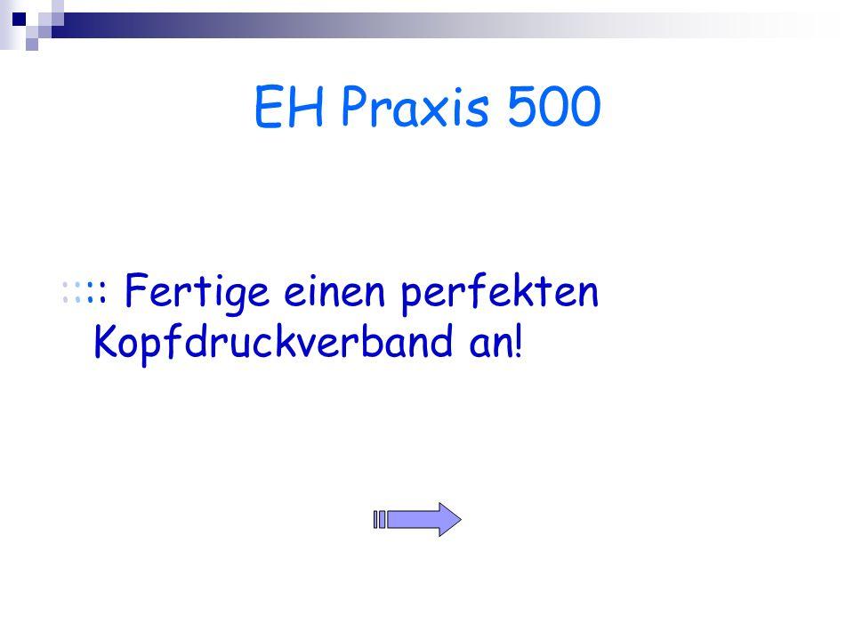 EH Praxis 500 :::: Fertige einen perfekten Kopfdruckverband an!